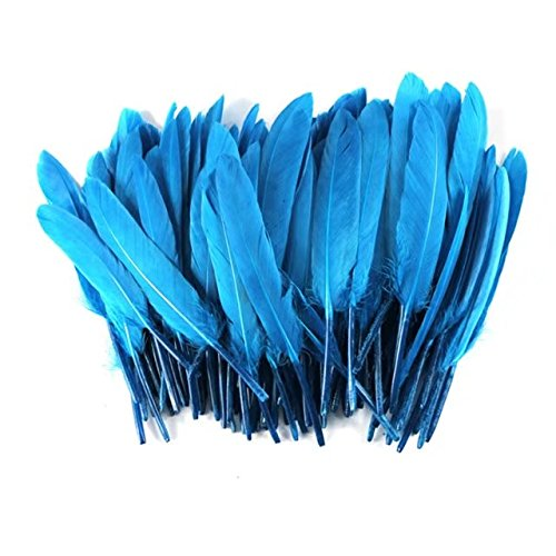 Celine lin 100PCS Dyed Home Decor Goose Feather For Art,Home Party or Wedding 4-6inch,Lake blue ()