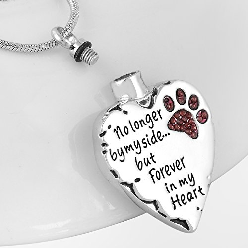 Eternally Loved Unisex No Longer by My Side But Forever in My Heart Dad&Mom Cremation Ashes Urn Pendant Necklace (Pet)