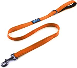 """Max and Neo Reflective Nylon Dog Leash - We Donate a Leash to a Dog Rescue for Every Leash Sold (4 FT x 5/8"""" Wide, Orange)"""
