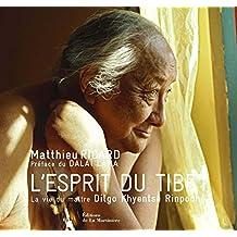 Esprit du Tibet (L') [nouvelle édition]: Vie du maître Dilgo Khyentsé Rinpoché