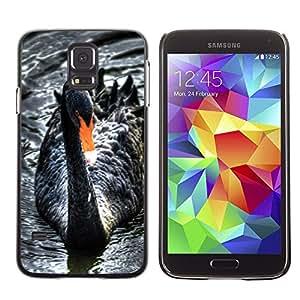 TECHCASE**Cubierta de la caja de protección la piel dura para el ** Samsung Galaxy S5 SM-G900 ** Black Swan Water Beak Cute Bird Ornithology