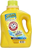 Arm & Hammer Liquid Laundry Detergent - 122.5 oz - Fresh Scent