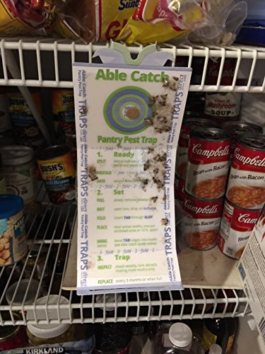 8 Pantry Moth Traps   Effective Non-toxic Pheromone Lure   USA Made   Guarantee by Able Catch (Image #8)