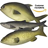 Artificial Fish Realistic Fake Fish Simulated Model The Best Looking Real Fish Food Display Perfect Plastic Kids Toy Or Fish Photography Prop Durable 12 to 16 inches LARGE