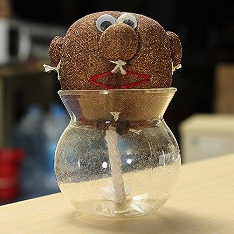 Amazon.com : Mini DIY Magic Grass Plant Pot Grass Head Doll Indoor ...