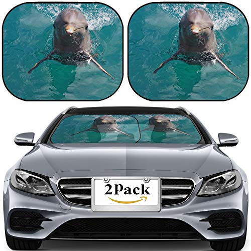 MSD Car Sun Shade for Windshield Universal Fit 2 Pack Sunshade, Block Sun Glare, UV and Heat, Protect Car Interior, Image ID: 10195823 A Wild Bottlenose Dolphin Turisops Truncatus Looking inqui