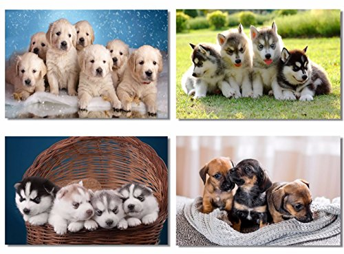 4Pcs x Poster Dog Husky Chihuahua Golden Retriever Pug Puppy Dog Cute Adorable Pets Animal For Pet Shop Room Hotel Office Wall Deco Prints 20x13