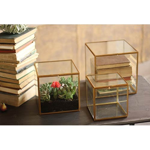 Square Glass Display Boxes