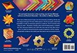 Geometric Origami Kit: The Art of Modular Paper Sculpture: This Kit Contains an Origami Book with 48 Modular Origami Papers and an Instructional DVD