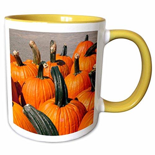 3dRose Danita Delimont - Autumn - USA, Virginia, Leesburg, Autumn pumpkins - US47 LFO0005 - Lee Foster - 11oz Two-Tone Yellow Mug - Leesburg Outlet