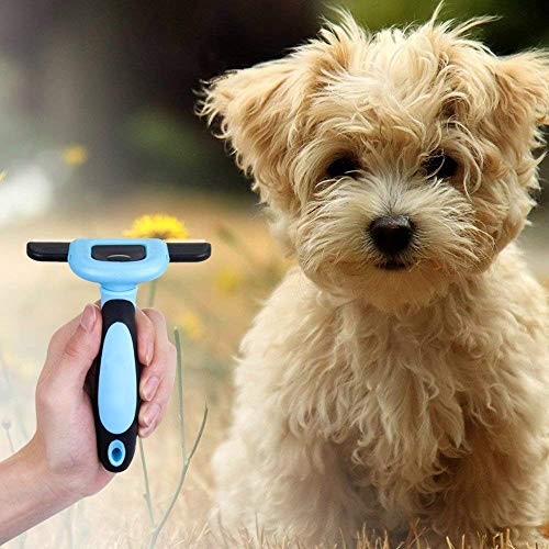Pet Grooming Brush, Pet Hair Removal Tool and Dog and cat Beauty Brush, Stainless Steel Safety Blade, pet Brush by Ashnna (4 inches and 5 inches Wide) (L, Blue)