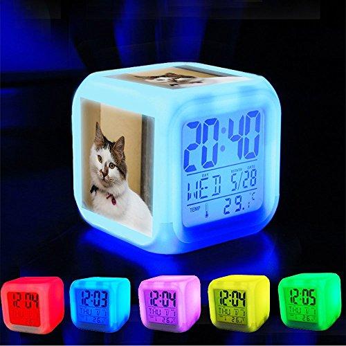 Pet Animal Alarm - 4