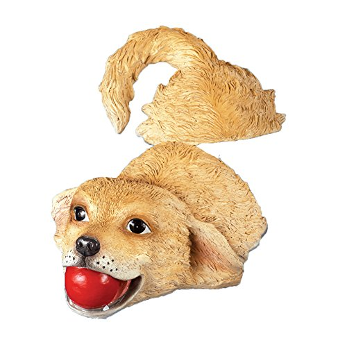 Collections Etc Dog Fetching Pool Floater, Beige by Collections Etc