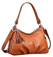 Heshe Women's Shoulder Bag Cross Body Hobo Handbag
