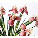 Skyseen-6Pcs-Artificial-Silk-Flower-Bridal-Real-Touch-Iris-Flower-for-Wedding-Party-Banquet-Home-Decoration-Pink