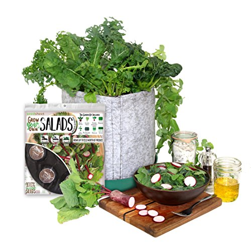 Grow Your Own Salad Partial Kit