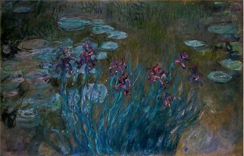 Paul Hobbs Napa - Oil Painting 'Irises And Water-Lilies, 1914-1917 By Claude Monet', 18 x 28 inch / 46 x 71 cm , on High Definition HD canvas prints is for Gifts And Bed Room, Garage And Hallway Decoration