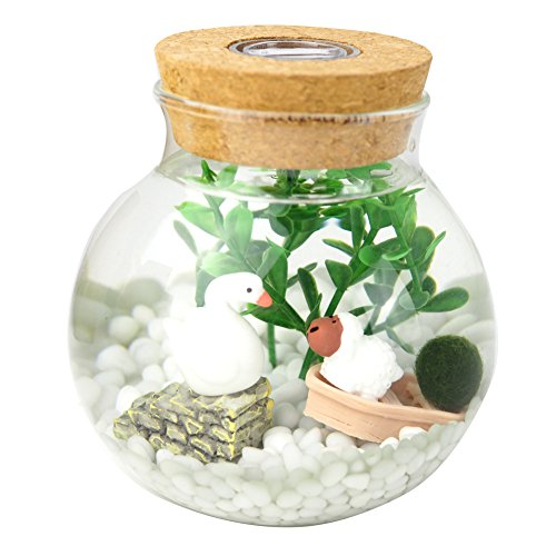 Omem Aquarium Set   Lifestyle Moss Balls  Seaweed  Gravel  Doll  Boat Workbench Decoration Valentine Gift  1 Year Old With Lights  Small Mo