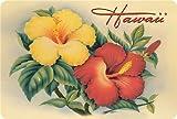 Hawaiian Vintage Postcards Pack of 30 - Hawaiian Hibiscus by Eve