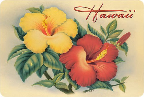 Hawaiian Vintage Postcards Pack of 30 - Hawaiian Hibiscus by Eve (Island Postcard)