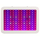 Morsen US Stock Led grow Light Panel 600 Watts Full Spectrum 5w Led Chips for Indoor MJ Plant Veg Flower Cultivate
