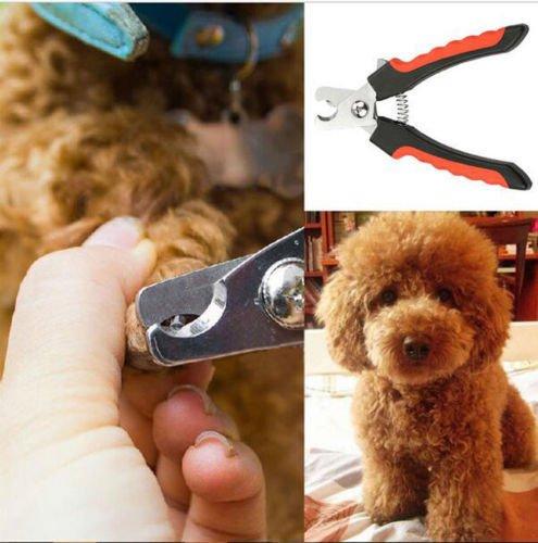 NPLE--Stainless Steel Pro Nail Clipper Cutter Scissor For Pets Dog Cat Bird Guinea KY