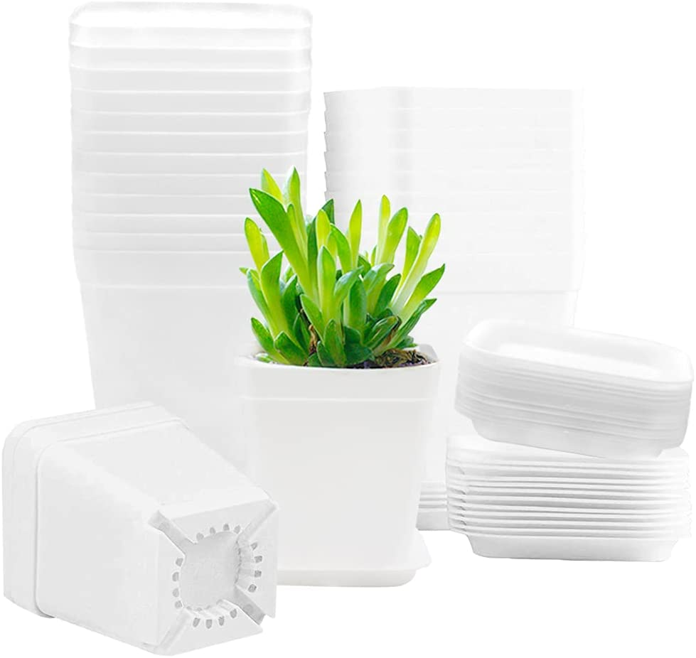 24 PCS 3 Inch Plastic Plant Pots,White Square Nursery Pots with Saucers,Seeding Nursery Transplanting Planter Container for Home,Office,Garden and Balcony Decor