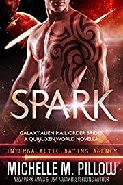 Spark: A Qurilixen World Novella: Intergalactic Dating Agency (Galaxy Alien Mail Order Brides Book 1)
