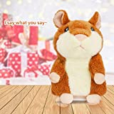 Qrooper Talking Hamster Plush Toy Repeats What