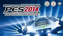 Pro Soccer Evolution 2014  [Online Game Code]