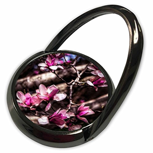 Magnolia Budding - 3dRose Boehm Photography Flower - Budding Magnolia Flowers - Phone Ring (phr_127509_1)