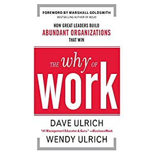 The Why of Work Audiobook