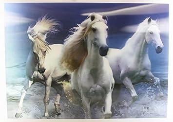3 3D de cheval Blanc, Poster 3D Décoration murale Chevaux à cadre 35 ...