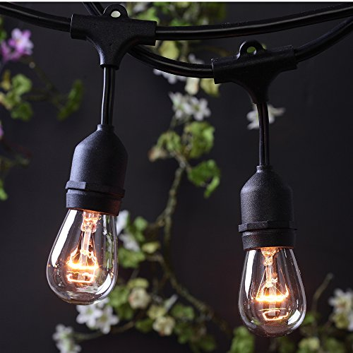 Commercial Outdoor Light (AMLIGHT Outdoor Commercial String Lights- UL Listed- 48 Feet- 24 Hanging Sockets- Perfect Patio Garden or Party- Bulbs Not)
