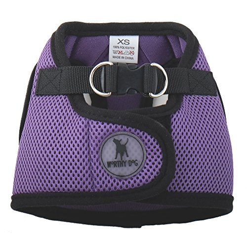 0.75' Snap Hook (Sidekick Harness, Purple, XXL)