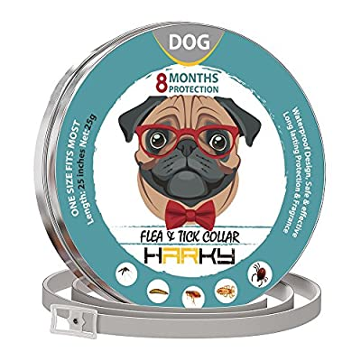 GORAUL Dog Flea Collar - Prolonged Tick Prevention - Waterproof and Safe Dog Collar - Natural Ingredients and Adjustable Flea Medicine from GORAUL