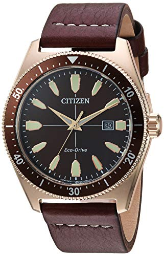 Citizen Men's Eco-Drive Stainless Steel Japanese-Quartz Leather Calfskin Strap, Brown, 21 Casual Watch (Model: AW1593-06X)