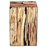 Ebelyne Rustic Lodge Petrified Wood Block End Table