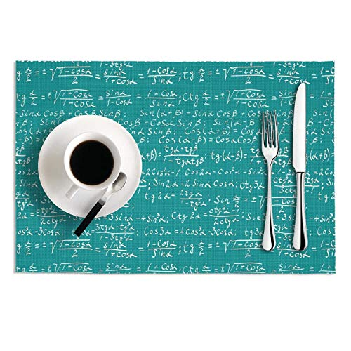 Verodley Placemats Blue Partial Differential Equations Non-Slip Heat Insulation Stain Resistant Washable Crossweave Woven Vinyl PVC Table Mats - Set Of 2