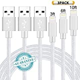 DANTENG Lightning Cable 3Pack 3FT 6FT 10FT Nylon Braided Certified iPhone Cable USB Cord Charging Charger for Apple iPhone X, 8, 7, 7 Plus, 6, 6s, 6+, 5, 5c, 5s, iPad, iPod Nano, iPod Touch (Silver)
