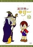 魔法使いサリー 12〔カラー版9〕 [DVD]