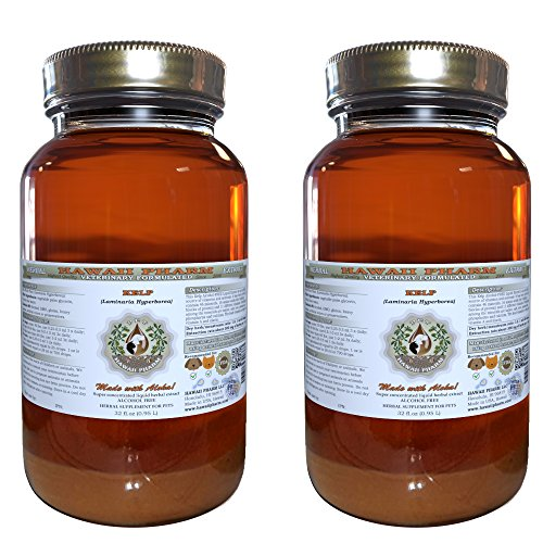 Kelp, VETERINARY Natural Alcohol-FREE Liquid Extract, Pet Herbal Supplement 2x32 oz by HawaiiPharm
