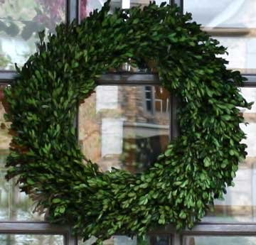 (22 Inch Real Boxwood Wreath-)