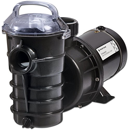 (Pentair Dynamo 1 Horsepower Above Ground Pool Pump - 340197)