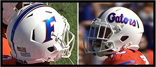 Riddell FLORIDA GATORS NCAA Revolution SPEED Mini Football Helmet