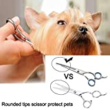 FlyCreat 4PCS Stainless Steel Dog Grooming