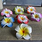 10Pcslot-Frangipani-Artificial-Flower-Headdress-Flowers-Egg-Flowers-Wedding-Decoration-Party-SuppliesBlue5cm