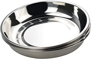 HOMMP 4-Pack 10 INCHES Stainless Steel Round Plate/Camping Metal Dinner Plates