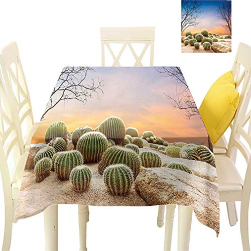 - Bohodecor Cactus Decor Tablecloths, Cactus Balls with Spikes on a Montain Desert Sand Mexican Landscape Photo Square Fabric Table Covers for Dining Room Kitchen, 36'' x 36'' Multicolor