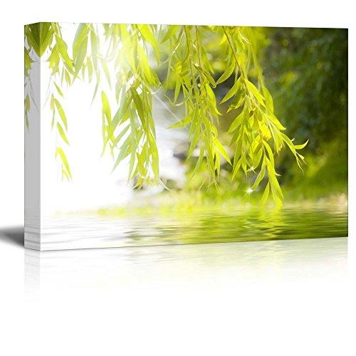 (wall26 - Tree Framing a Serene Lake - Canvas Art Home Decor - 12x18 inches)